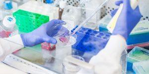 Thí nghiệm liệu pháp gen