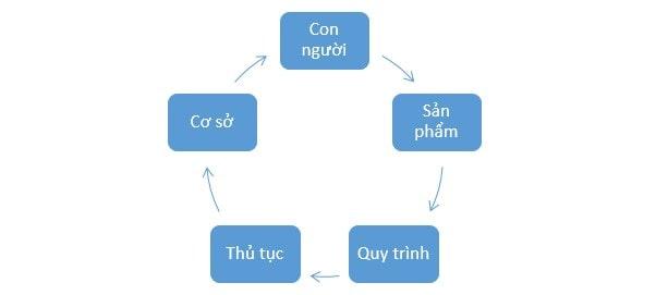 quy trình GMP